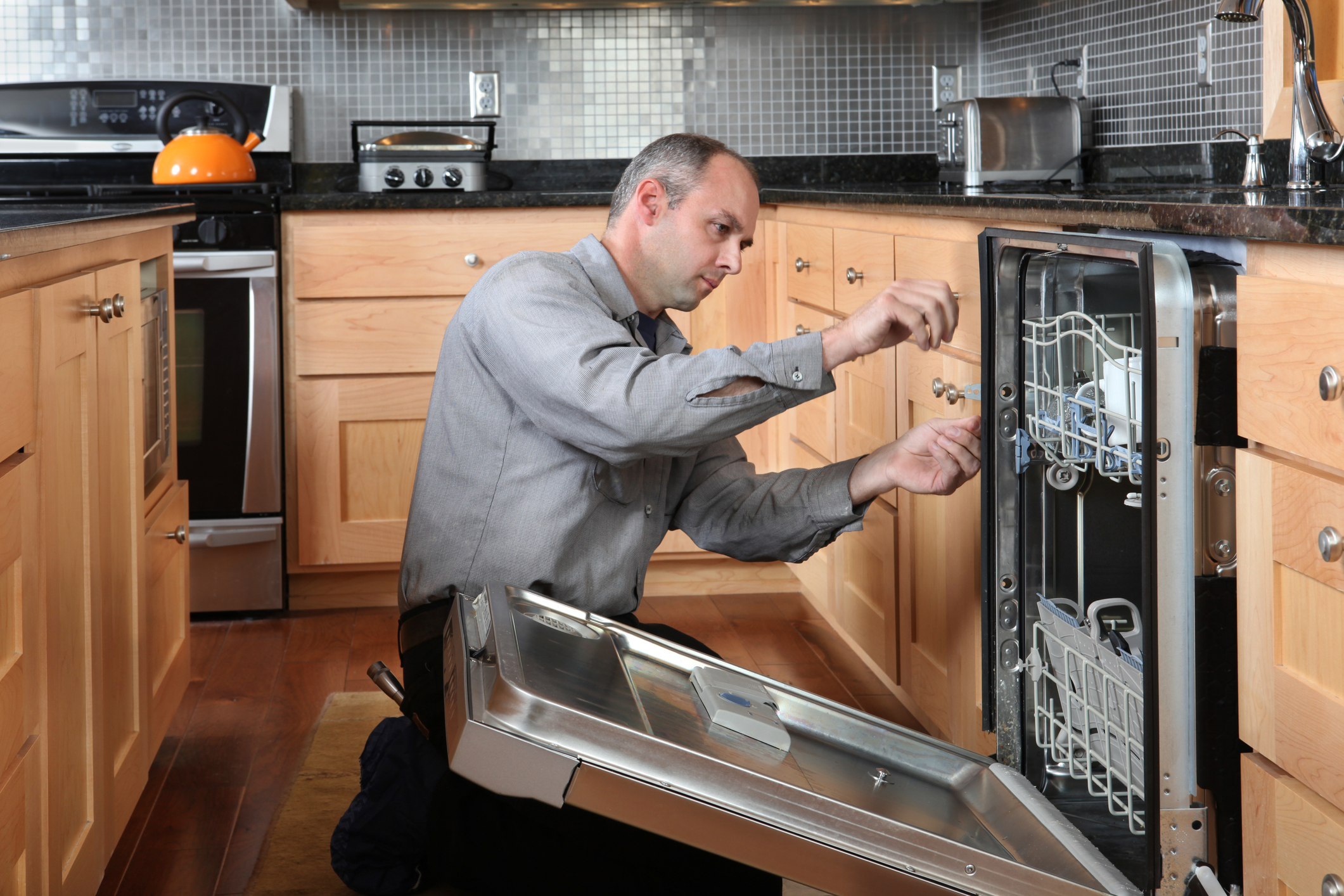 Appliance Repair Meridian | Western Appliance Repair